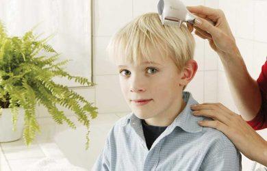 Las 5 mejores liendreras eléctricas buenas y efectivas para pelo seco o mojado
